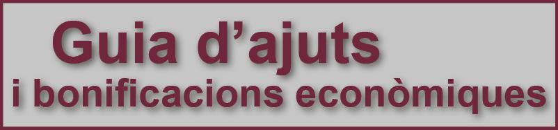 Guia d'ajuts i bonificacions econòmiques